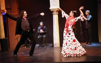 Museo del Baile Flamenco Bookings